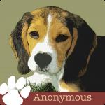 LVH0004_Pet Blog_Anonymous3