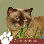LVH0004_Pet Blog_Anonymous4