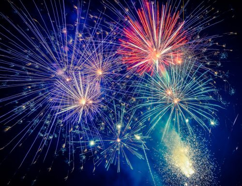 Don't Fear the Fireworks – 7 Tips to Help Your Pet During 2020's Loudest Season